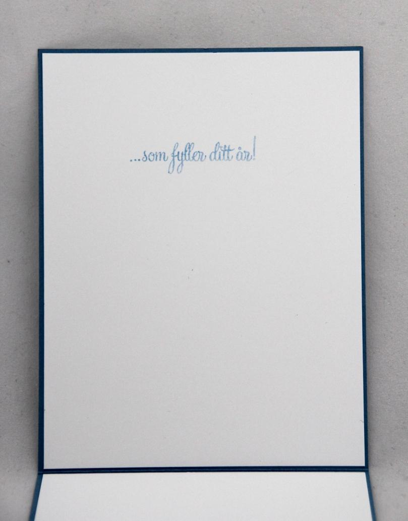 0314 - Elin H. Venge - bursdagskort inni