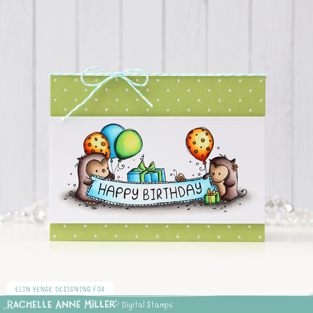 Rachelle Anne Miller Birthday Owls front rett
