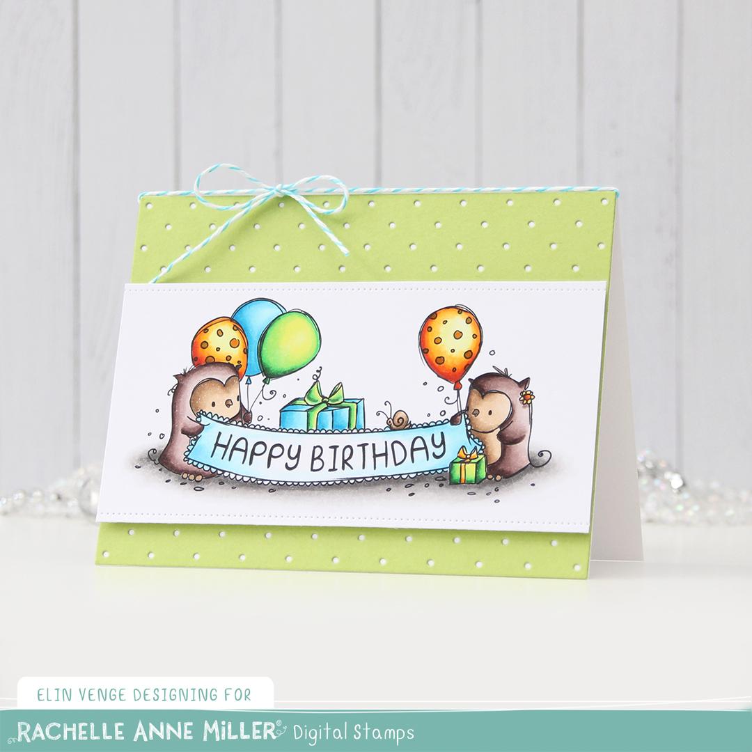 Rachelle Anne Miller Birthday Owls front skrått