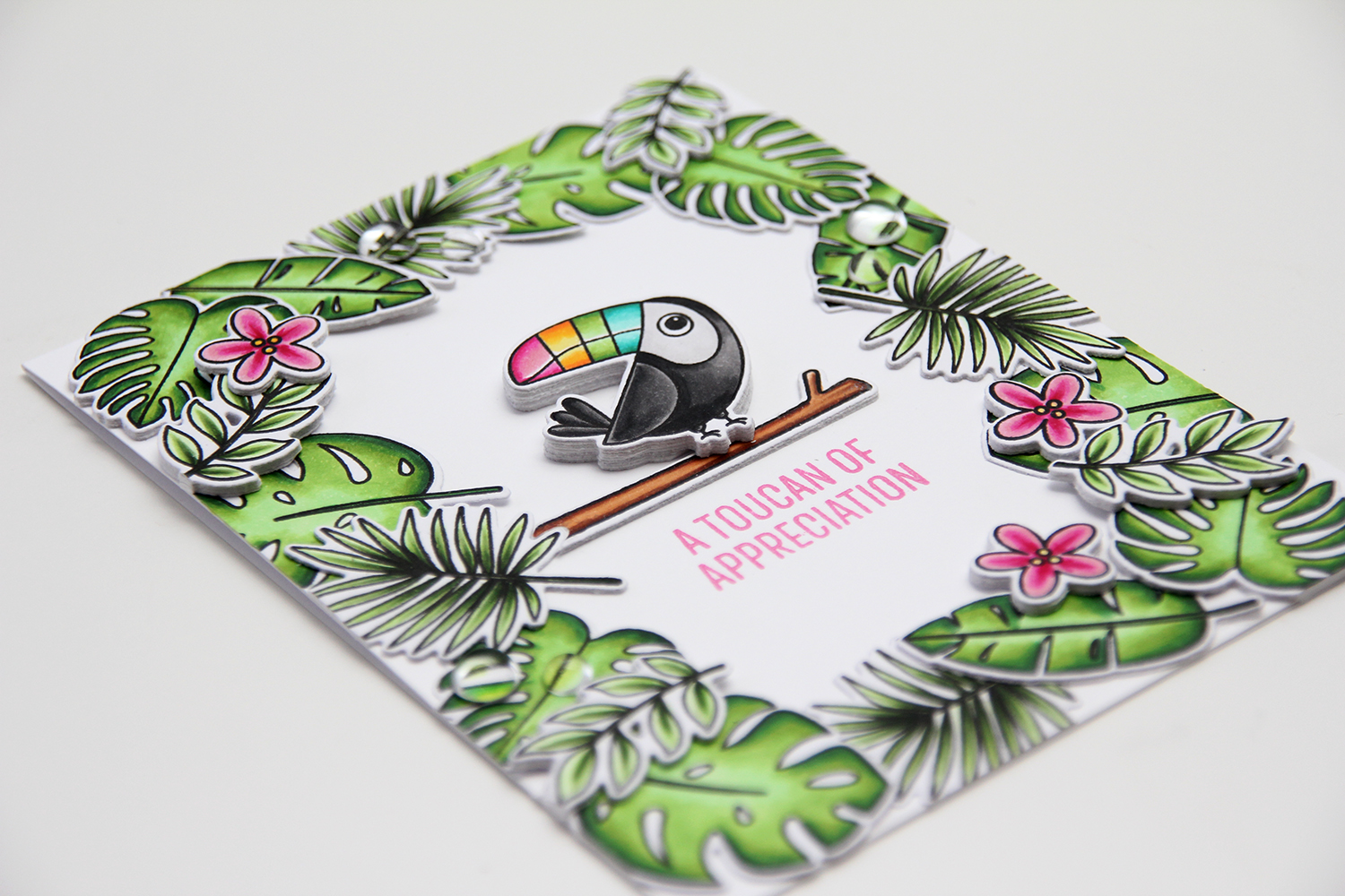 My Favorite Things Something to Squawk About Toucan of Appreciation dimensjon