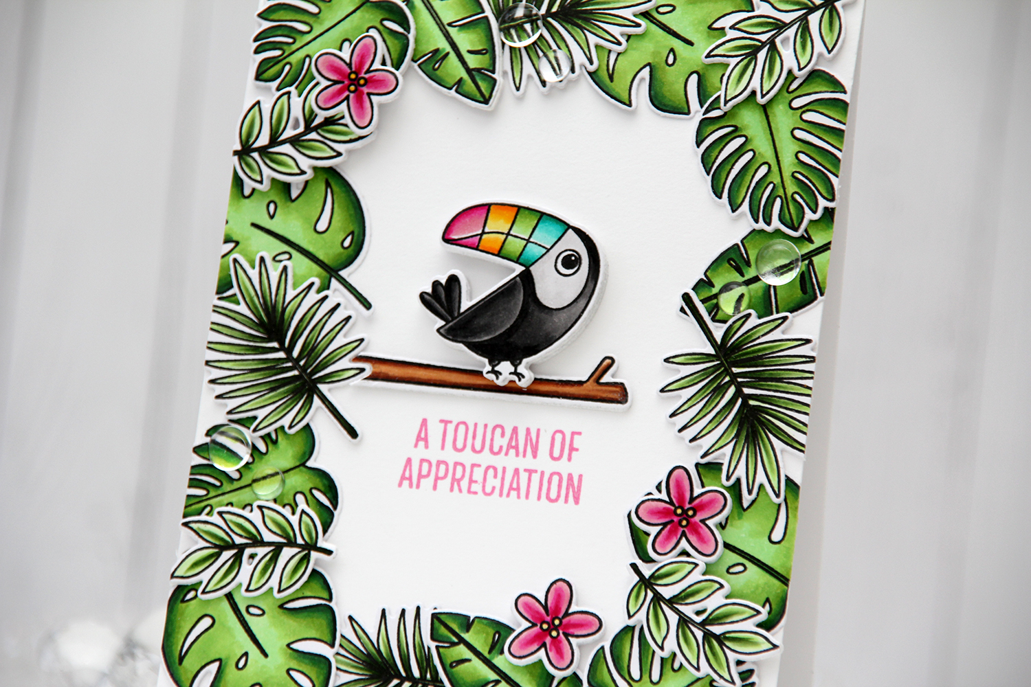 My Favorite Things Something to Squawk About Toucan of Appreciation front skrått header